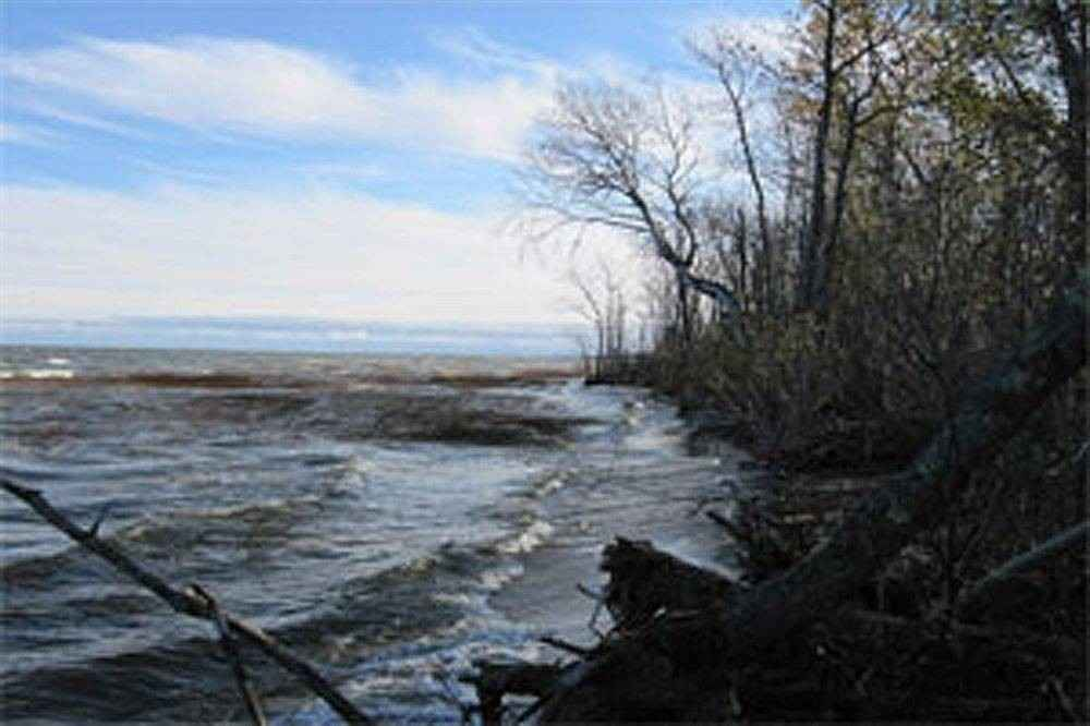 View 7 photos of this _0 bed, _0 bath, and  sqft. land home located at 47741 Sandberg Rd NE, Kelliher, Minnesota 56650 is Active for $55,900.