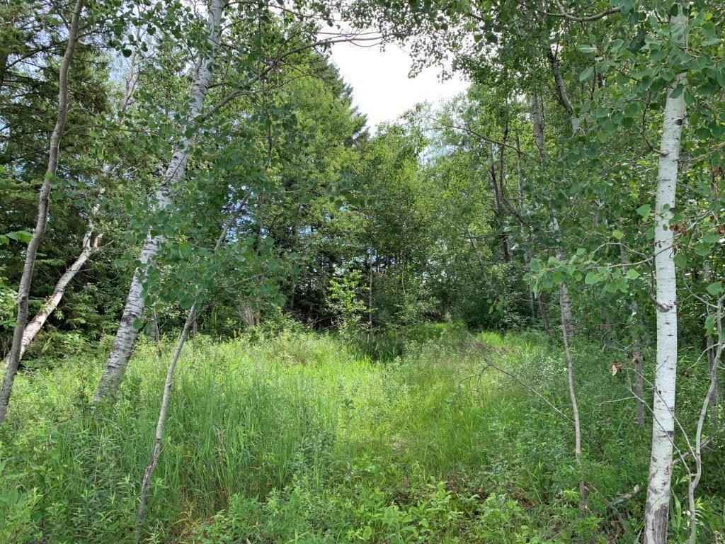 View 27 photos of this _0 bed, _0 bath, and  sqft. land home located at State Highway 27, Little Falls, Minnesota 56345 is Active for $120,000.