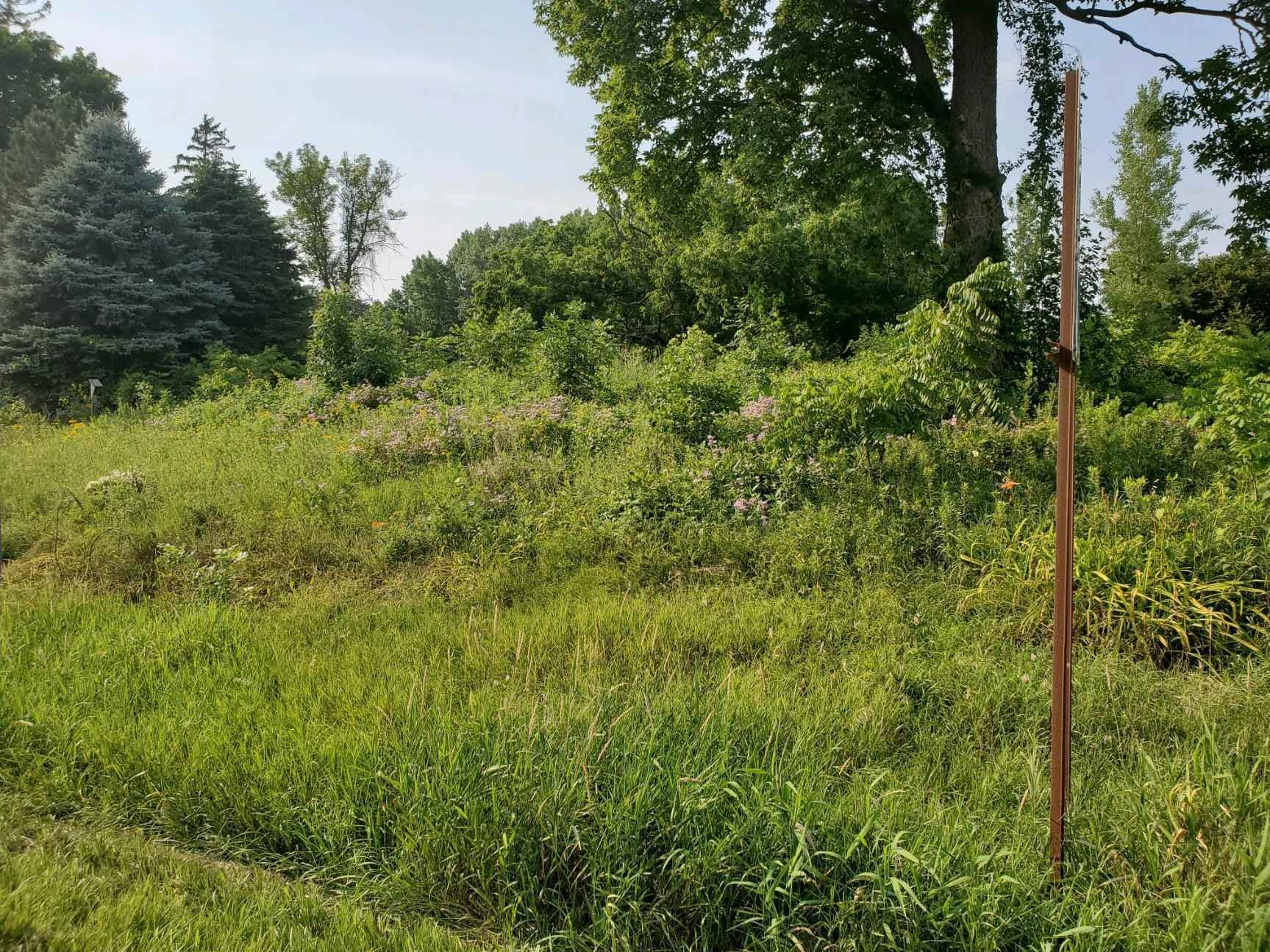 View 1 photos of this _0 bed, _0 bath, and  sqft. land home located at 912 Lake St, Freeborn, Minnesota 56032 is Active for $35,000.