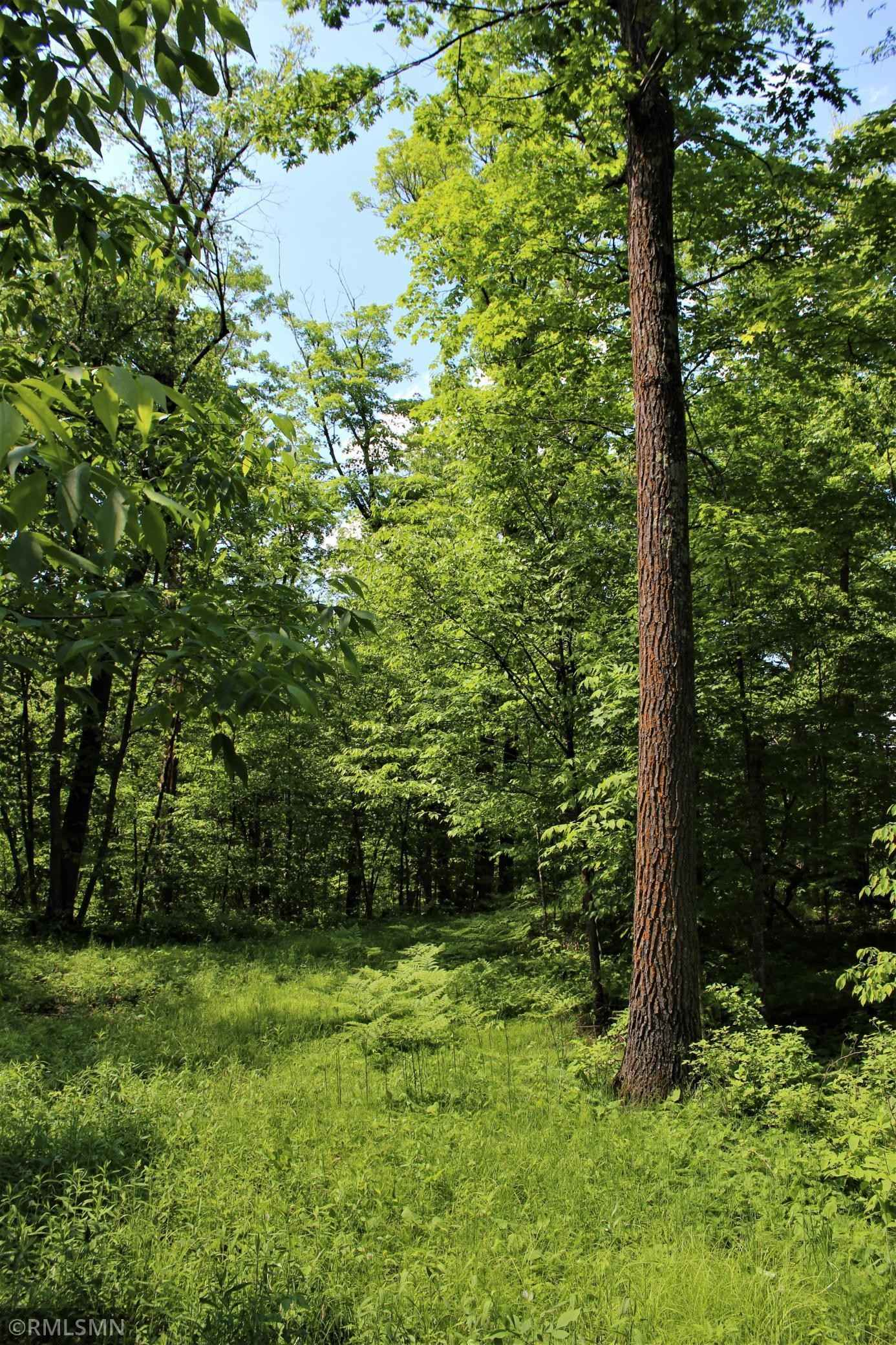 View 26 photos of this _0 bed, _0 bath, and  sqft. land home located at Nesburg Ct, Aitkin, Minnesota 56431 is Pending for $69,900.