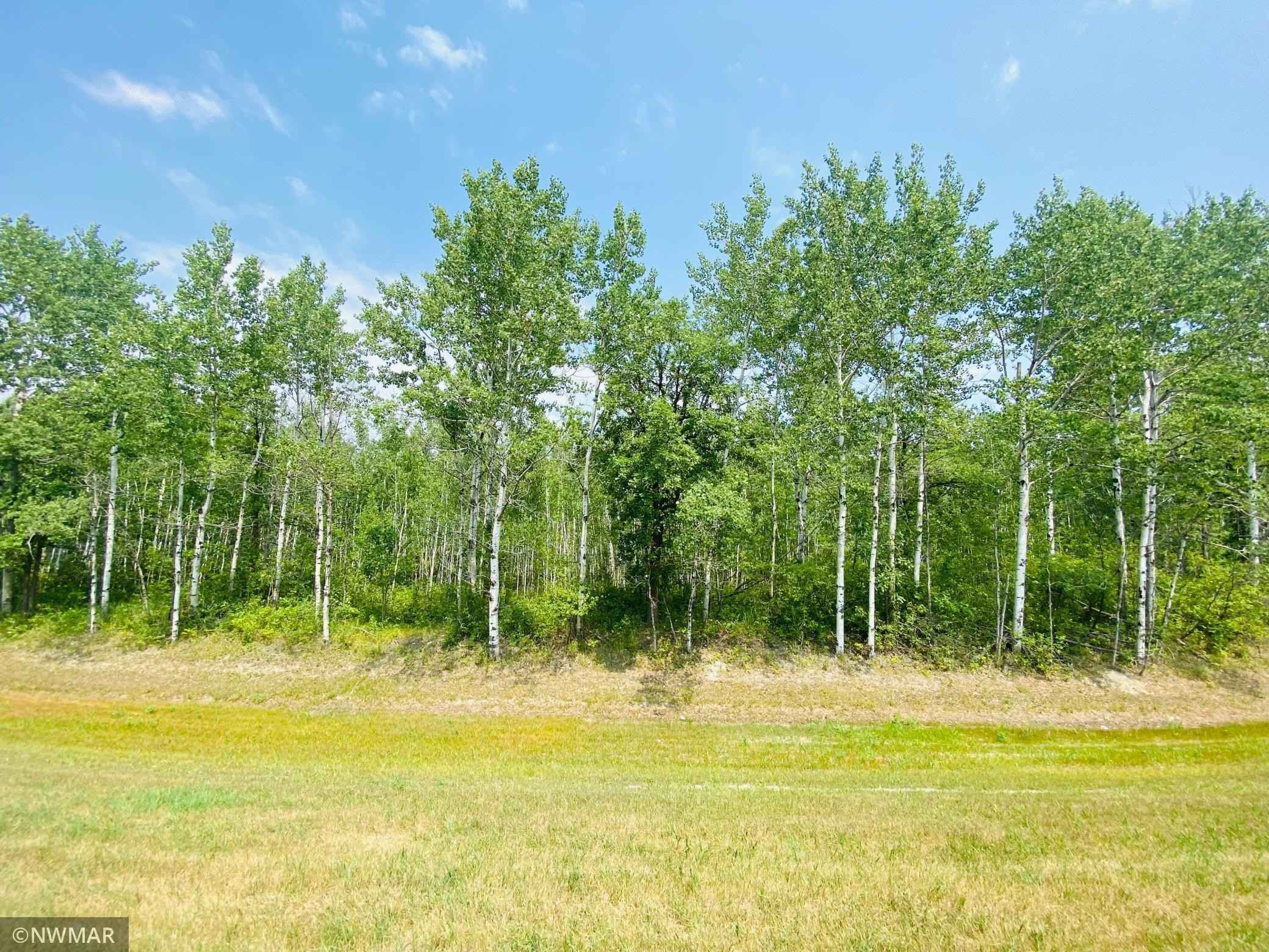 View 4 photos of this _0 bed, _0 bath, and  sqft. land home located at 140th St NE, Thief River Falls, Minnesota 56701 is Pending for $48,000.