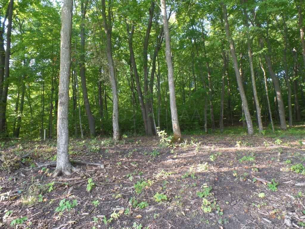 View 22 photos of this _0 bed, _0 bath, and  sqft. land home located at W Lake Olaf Rd Lot 4-6, Pelican Rapids, Minnesota 56572 is Active for $450,000.