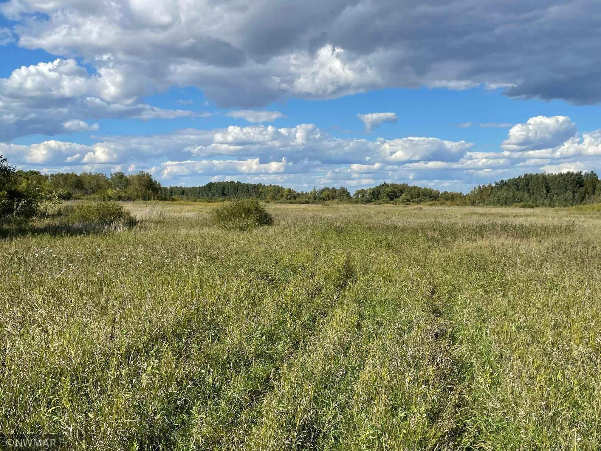 View 8 photos of this _0 bed, _0 bath, and  sqft. land home located at 25768 295th St SE, McIntosh, Minnesota 56556 is Active for $609,000.