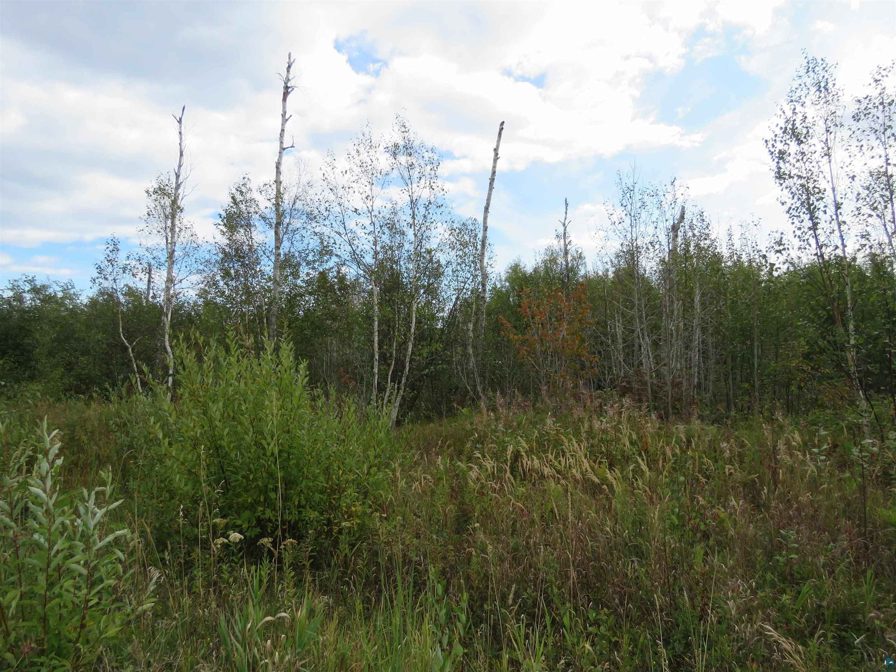 View 29 photos of this _0 bed, _0 bath, and  sqft. land home located at Birch Cliff Dr Lot 12, Tofte, Minnesota 55615 is ACTIVE for $64,500.