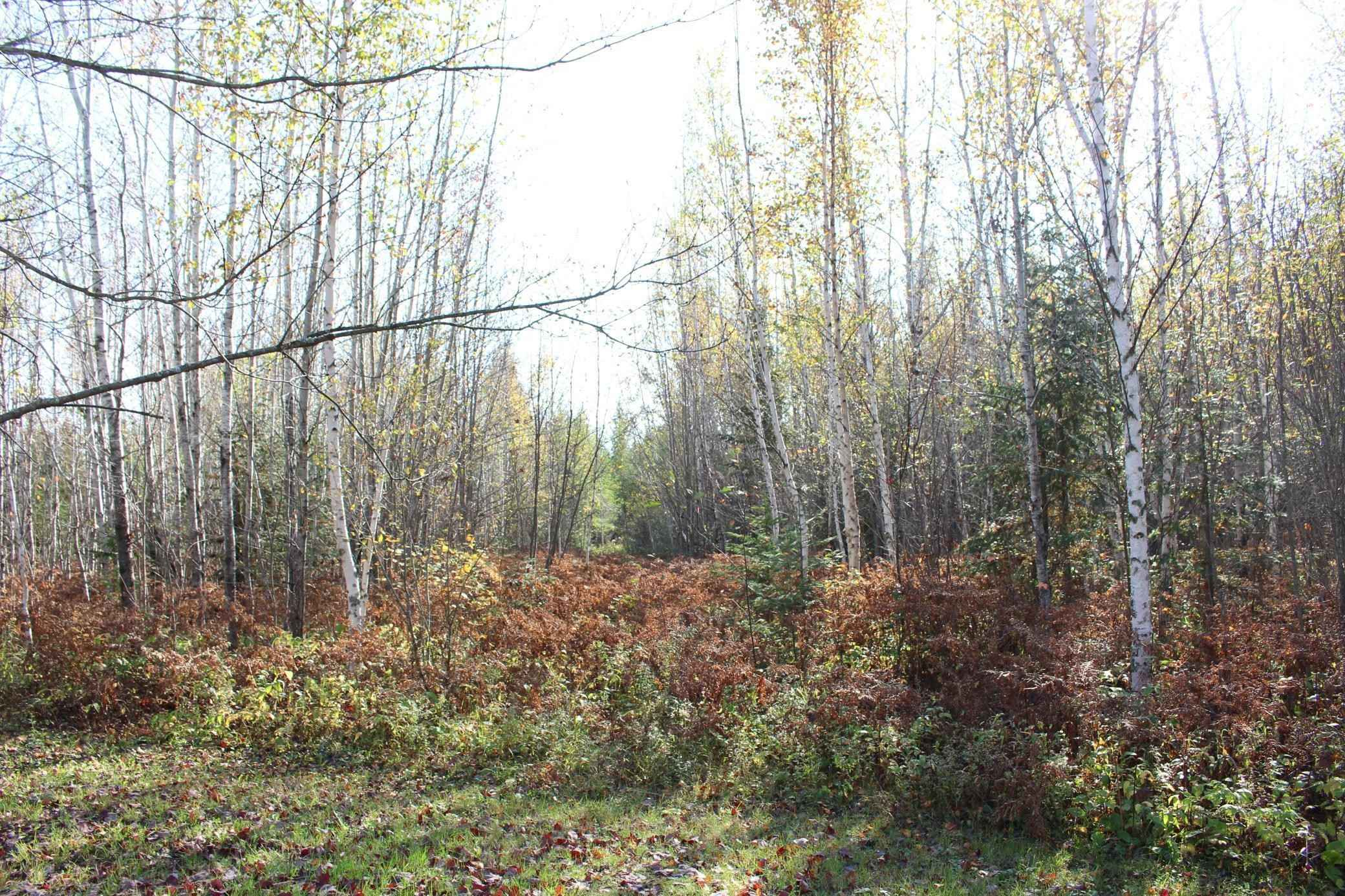 View 67 photos of this _0 bed, _0 bath, and  sqft. land home located at 9293 Highway 53, Cotton, Minnesota 55724 is Pending for $225,000.