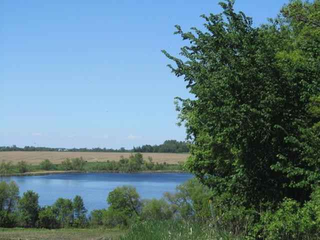 View 8 photos of this _0 bed, _0 bath, and  sqft. land home located at 180th St, Starbuck, Minnesota 56381 is Pending for $119,900.