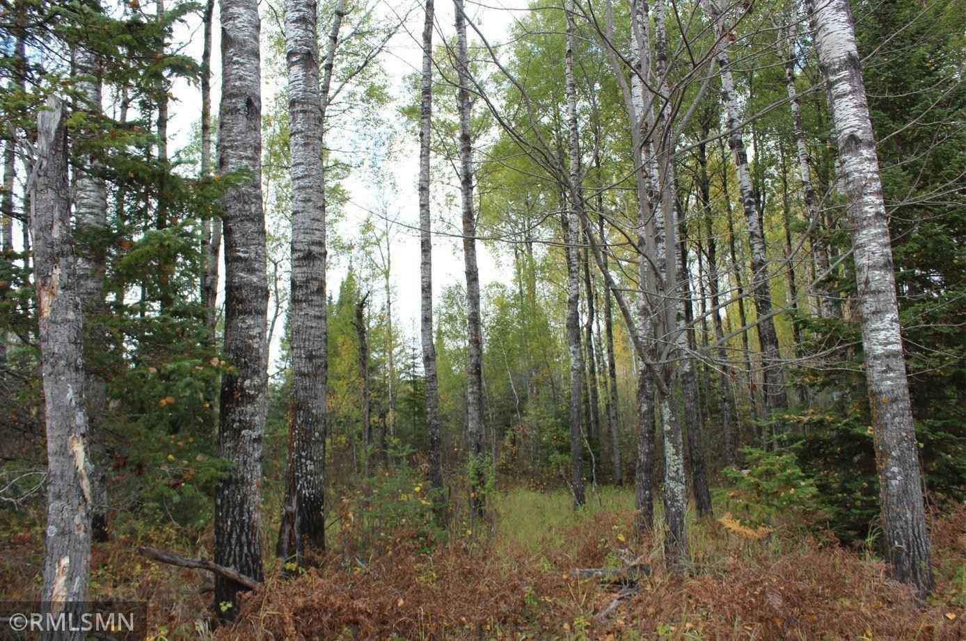 View 16 photos of this _0 bed, _0 bath, and  sqft. land home located at 1 Wegener Rd, Hibbing, Minnesota 55746 is Active for $129,900.