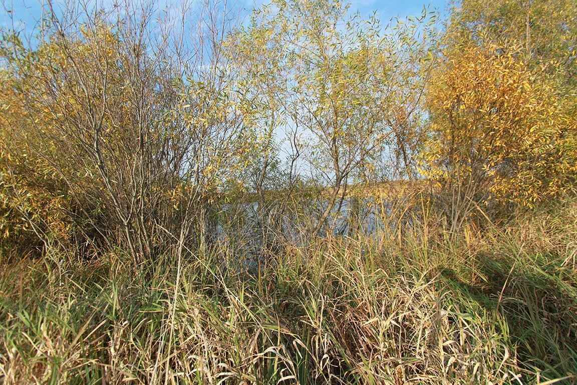 View 62 photos of this _0 bed, _0 bath, and  sqft. land home located at 352nd St, North Branch, Minnesota 55056 is Active for $124,900.