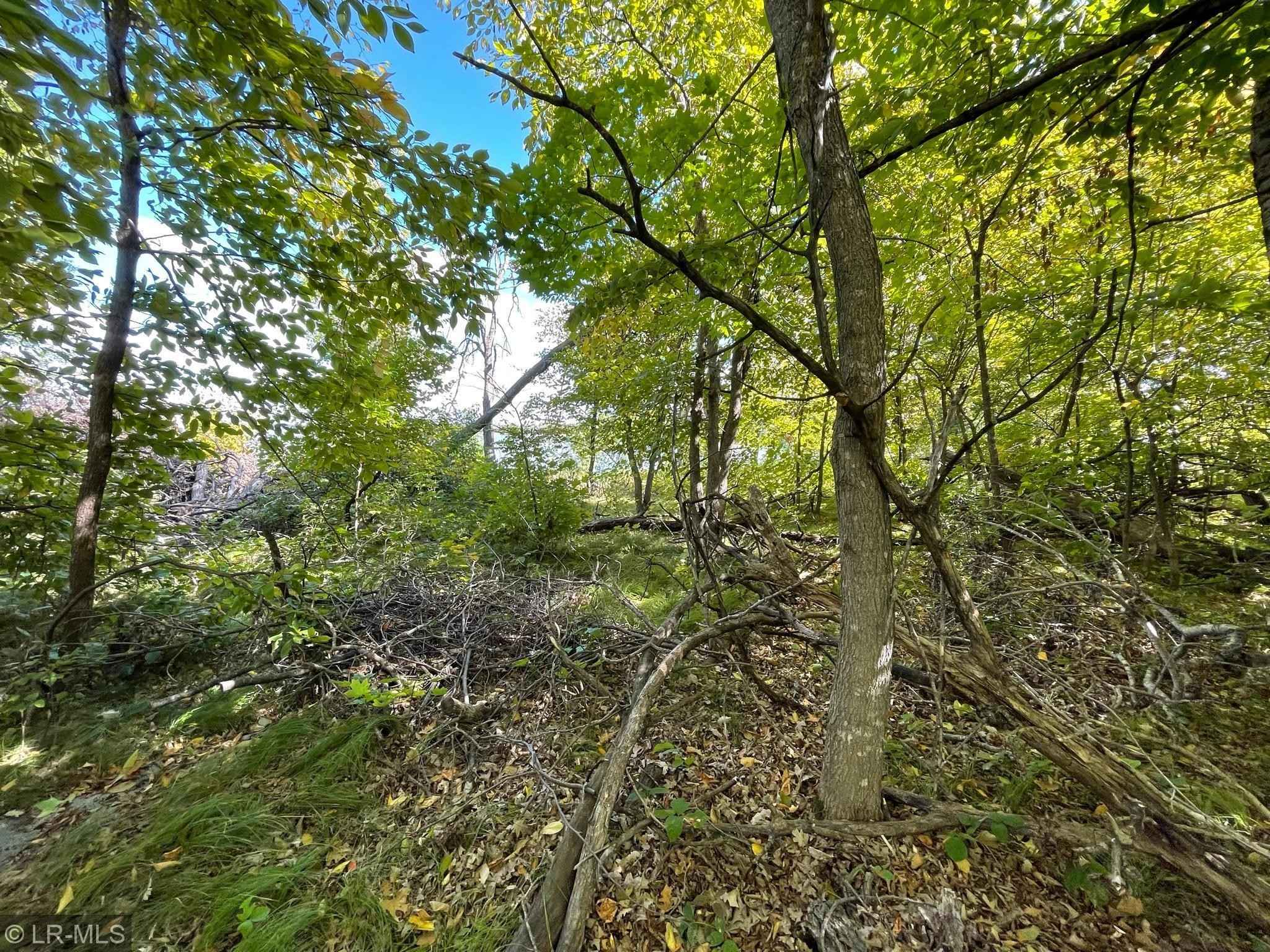 View 44 photos of this _0 bed, _0 bath, and  sqft. land home located at 42XXX Sugar Maple Dr, Ottertail, Minnesota 56571 is Active for $79,900.