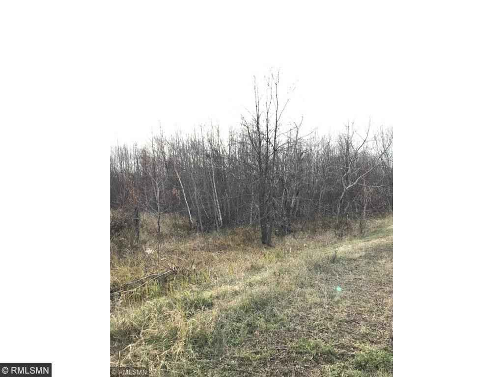 View 15 photos of this _0 bed, _0 bath, and  sqft. land home located at Forest Blvd, Rush City, Minnesota 55069 is Pending for $89,900.