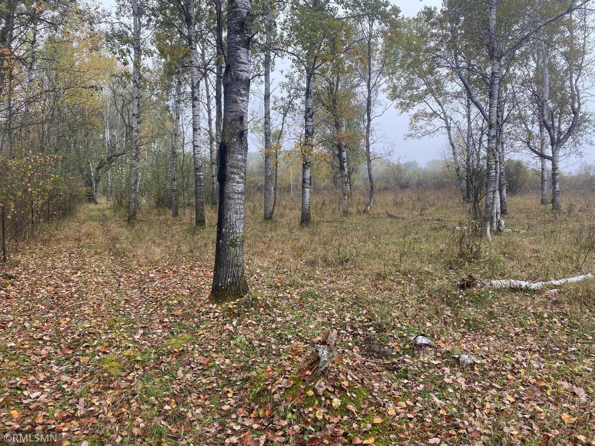 View 31 photos of this _0 bed, _0 bath, and  sqft. land home located at Tower Rd, Hinckley, Minnesota 55037 is Pending for $99,900.