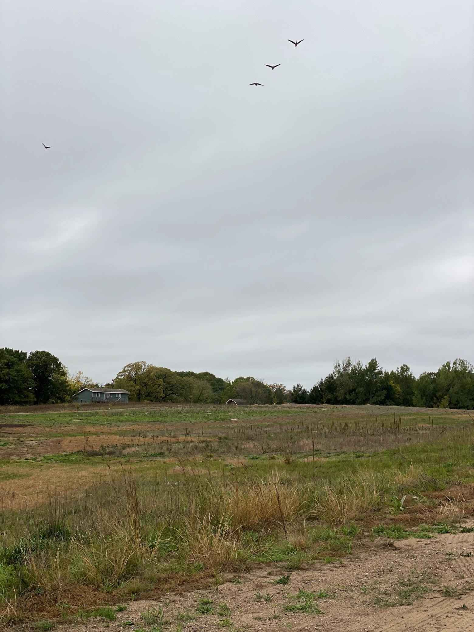 View 4 photos of this _0 bed, _0 bath, and  sqft. land home located at 2700X 112th Ave, Zimmerman, Minnesota 55398 is Active for $115,000.