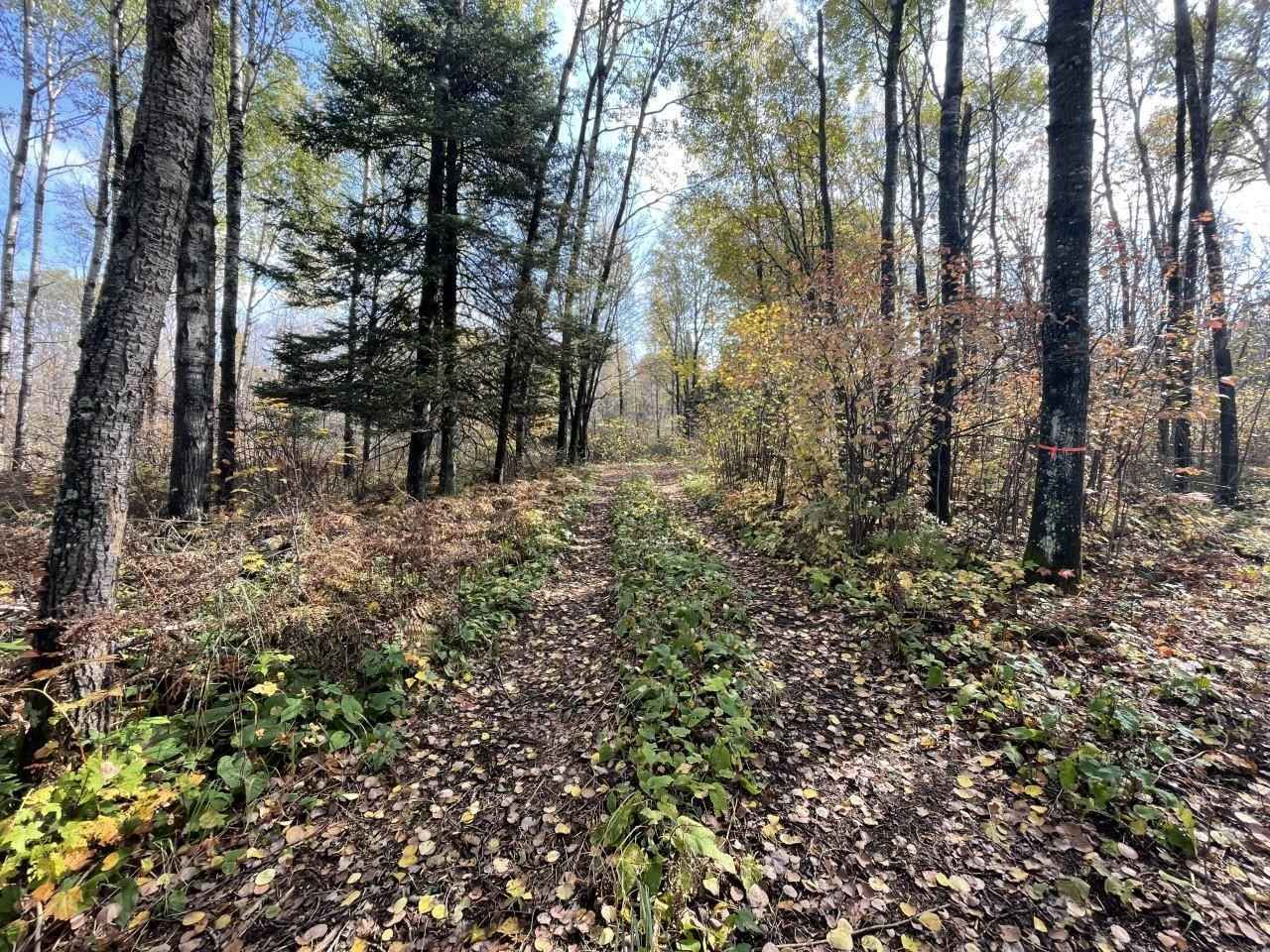 View 16 photos of this _0 bed, _0 bath, and  sqft. land home located at W Center Rd, Holyoke, Minnesota 55749 is Pending for $78,500.