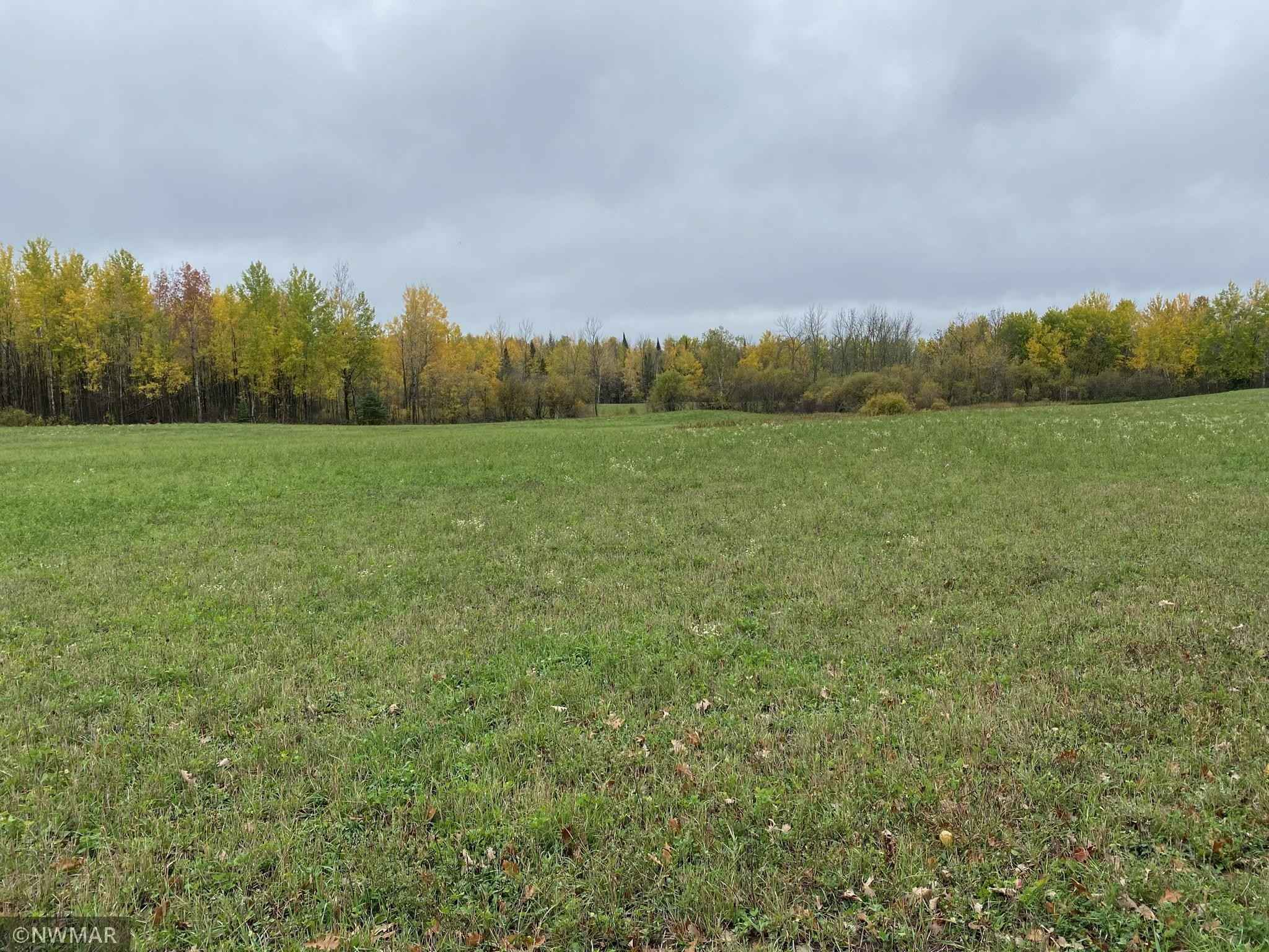 View 6 photos of this _0 bed, _0 bath, and  sqft. land home located at Brook Rd NE, Blackduck, Minnesota 56630 is Pending for $120,000.